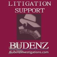 skills-portfolio-card-image-budenz-private-detective-Litigation-Support